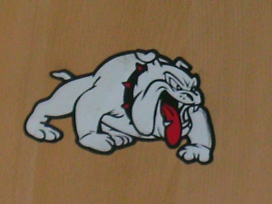 bulldog aditya mehta 2009