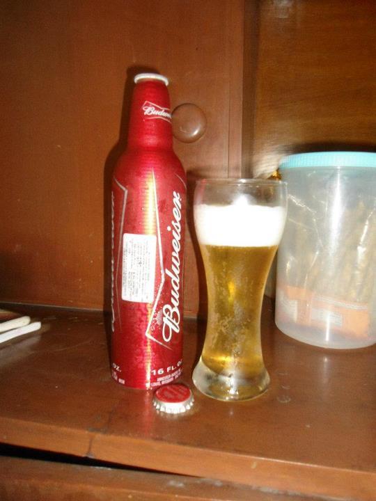 Beer Review: Budweiser (Aluminum Bottle) | Mehta Kya Kehta?
