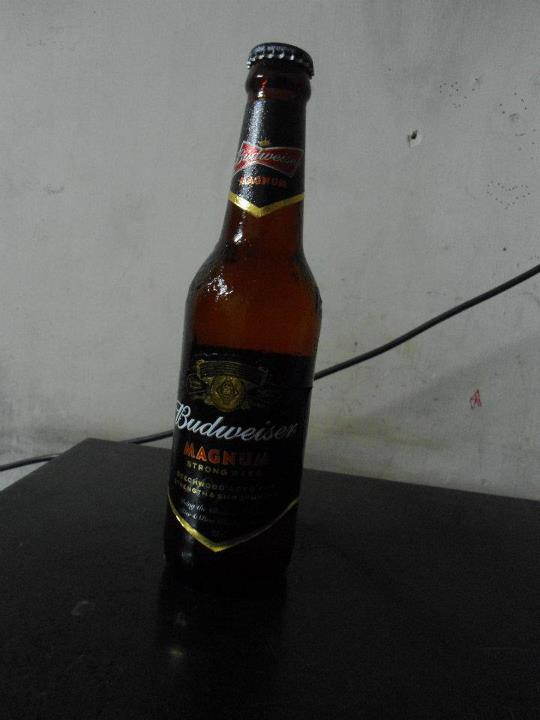 Beer Review: Budweiser Magnum | Mehta Kya Kehta?
