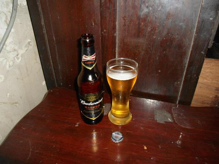 beer review budweiser magnum giggle water 411 - 655×491